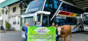 Penyerahkan hewan kurban 1 ekor sapi dan 8 ekor kambing kepada masjid terdekat Pool 2 Cibitung